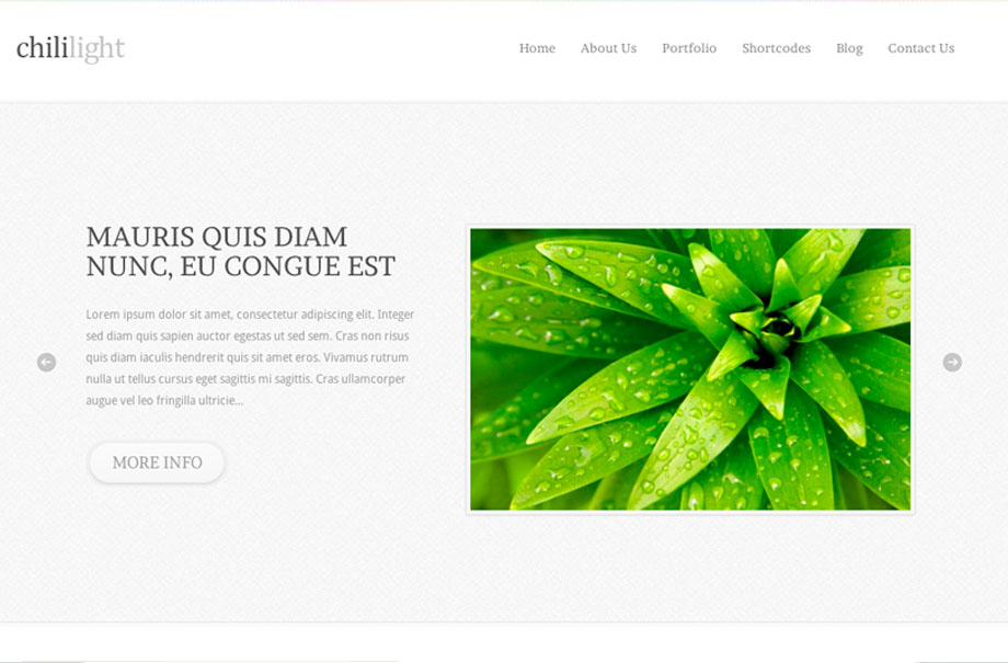 chililight-wordpress-theme