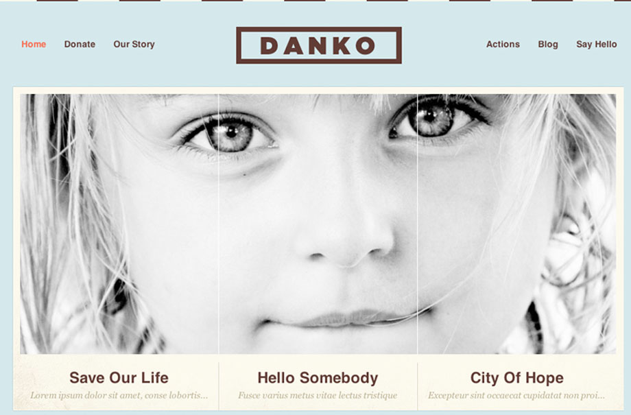 danko-wordpress-theme