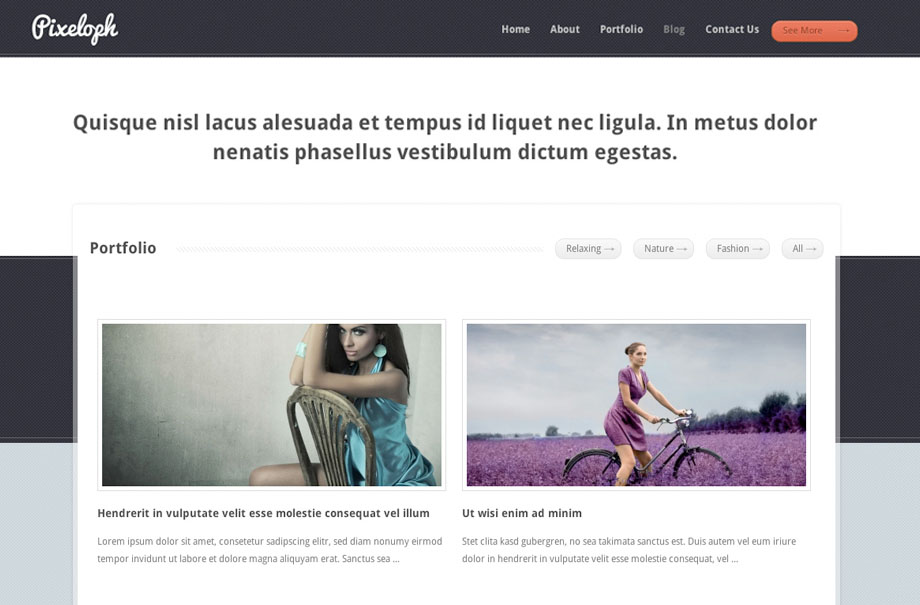pixeloph-wordpress-theme