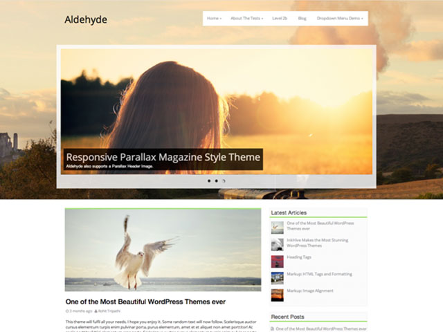 Aldehyde WordPress Theme