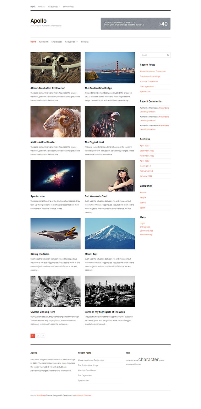Apollo WordPress Theme